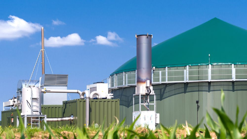 Umweltbedingungen wie Windstärke oder Sonneneinstrahlung spielen nur eine untergeordnete Rolle, um einen geeigneten Standort für eine Bioenergieanlage zu finden.