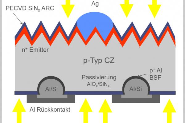Die Grafik zeigt einen gezeichneten schematischen Querschnitt einer PERC+ Solarzelle mit einer pyramidenartigen Struktur der Waferoberfläche.
